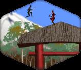 Ninja Temple run